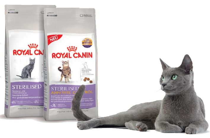 Корм royal canin после стерилизации